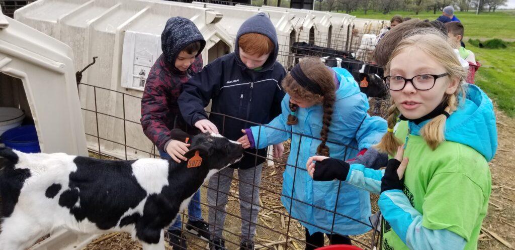 Students enjoying a farm field trip
